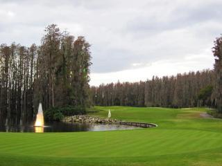2 Room Golf SPA Villa Suite close to Busch Gardens