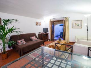 Florence center apartment, Borgo Ognissanti, Firenze