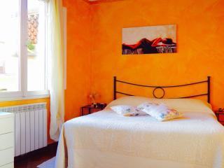 CAMELIA Pisa Lucca Florence Tuscany, Buti