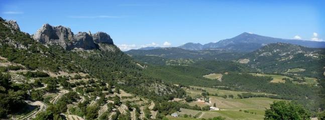 Les dentelles de montmirail trés beau site naturel à 20 km et en fond de photo le mont ventoux à 50