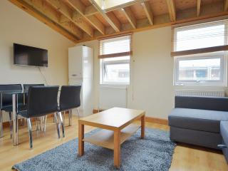 1 Bed Deluxe Apartment In Shoredtich, London