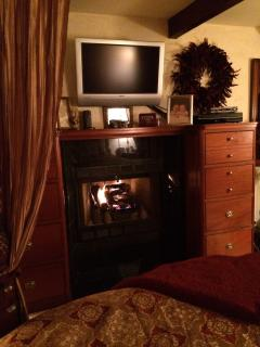 Fireplace and flat screen TV in master bedroom.