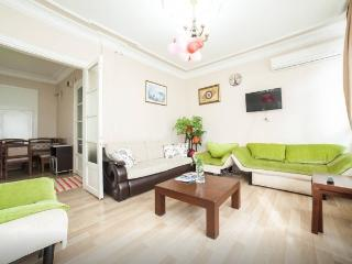 3BR+ 2WC- Cozy APT next 2d Blue Mosque, Estambul