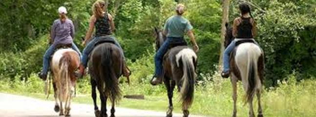Horse riding..Sami 15 mins drive