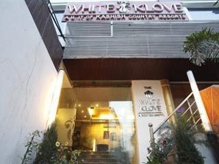 The White Klove, Nueva Delhi