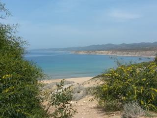 Take a swim in the beautiful clear blue waters of Lara Turtle beach.