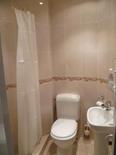 New completely upgraded Shower Room and Toilet