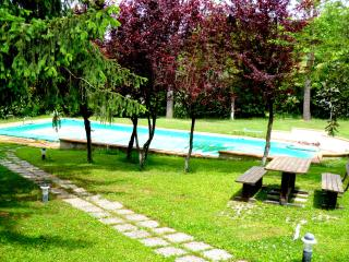 pool  and sitting/barbecue area