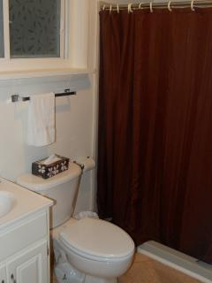 walk in shower with seating and grab bars