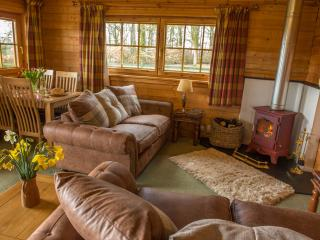 Super comfy sofa's surround the wood burning stove for cosy retreats