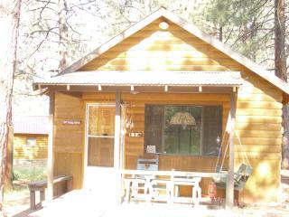11 Bear Road Cabin, Tierra Amarilla