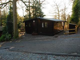 Moss Eccles - Log Cabin Neaum Crag Skelwith Bridge
