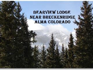 Bear View Lodge, Alma