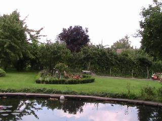 Blick vom Sitzplatz am Teich