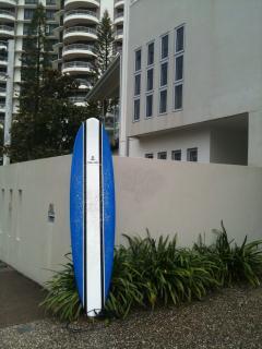 The surfboard - an 8' mini malibu