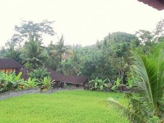 Rumah bali ubud villa with breakfast