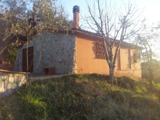 Casa agricola immersa tra gli olivi fronte mare., Riparbella