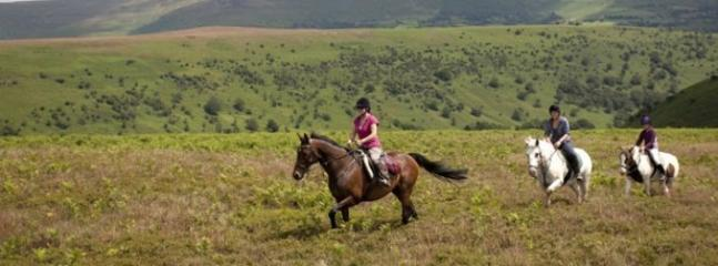 HORSE RIDING AND PONY TREKKING CENTRES IN THE BRECON BEACONS NATIONAL PARK