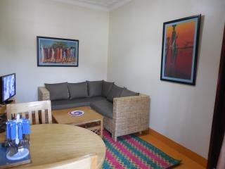 Newly Renovated One Bedroom Apartment, Kampala