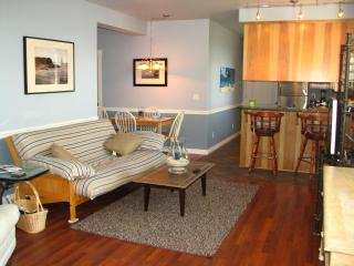 Open specious beach theme living area with cozy gas fire place and bar for entertaining.