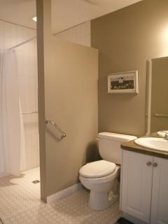 Bathroom has no thresh hold shower and raised toilet