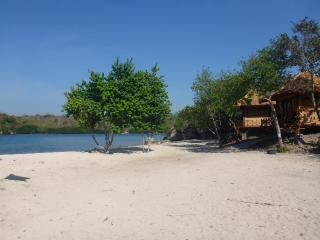 White Sandy Beach Menjangan - Bali, Banyuwedang