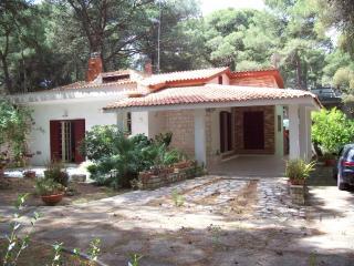 Appartamento in villa con patio e giardino