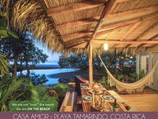 Casa Amor en Playa Tamarindo