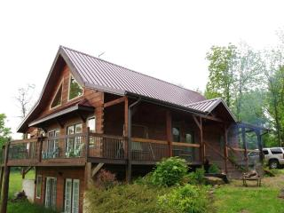 Wine Trail Log home, 6 mile views, beautiful sunset, close to SIU, Carbondale