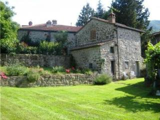 Fabulous  barn with shared pool near Florence, Londa
