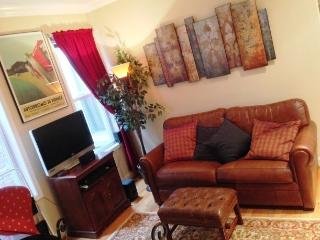 Fully Furnished Flat in Adams Morgan, D.C. (Apt 5)