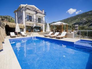 Holiday villa in islamlar / kalkan, sleeps 08: 100
