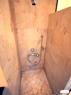 Shower of the Bathroom N°2