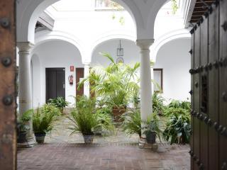 Apartamento Centro, CASA PALACIO LAS PALOMAS ,600 m. de la Playa., GARAJE Y WIFI