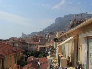 5 bedrooms, footstep from Monaco, July & August, Beausoleil