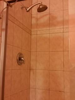 large, tiled walk-in shower in master bath