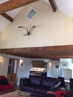 lounge -showing vaulted ceiling