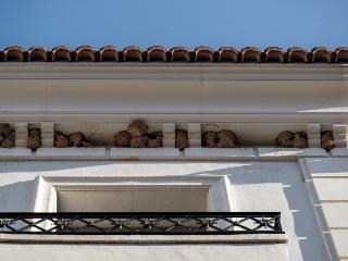 Nidos en la fachada de Totestiu