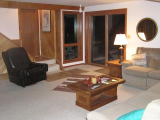 Killington Furnished Private Apartment