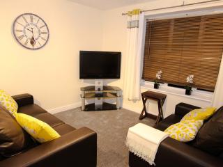 Waters Edge town centre apartment. Brand new kitchen, right by the canal