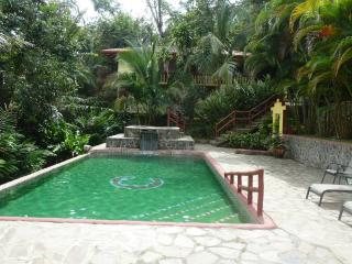 Deluxe Apt in Jungle Villa w Pool!