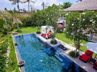 Kemala 4/5 Bedrooms Villa + Car + Driver, Canggu