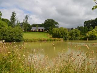 LILLI Cottage in Holsworthy, Bratton Clovelly