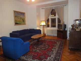 M1 big 2BR apartment near center and major sites, Prague