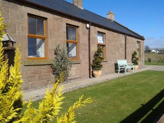 Jasmine Cottage and Bunk House, Montrose
