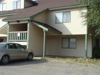 Downtown McCall Clean 2 bed/2 bath Wi-fi, Parking