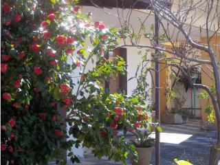 Casa 'Camelia' con giardino, Andrano