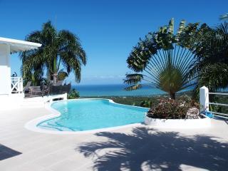 Villa privée avec piscine vue mer exceptionnelle, Las Terrenas
