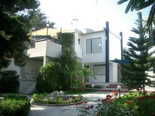 Modern residence-Chanioti-Halkidiki