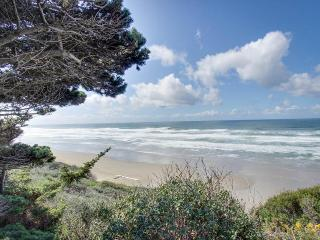 Oceanfront, pet-friendly, secluded home near golf & beaches, Bandon